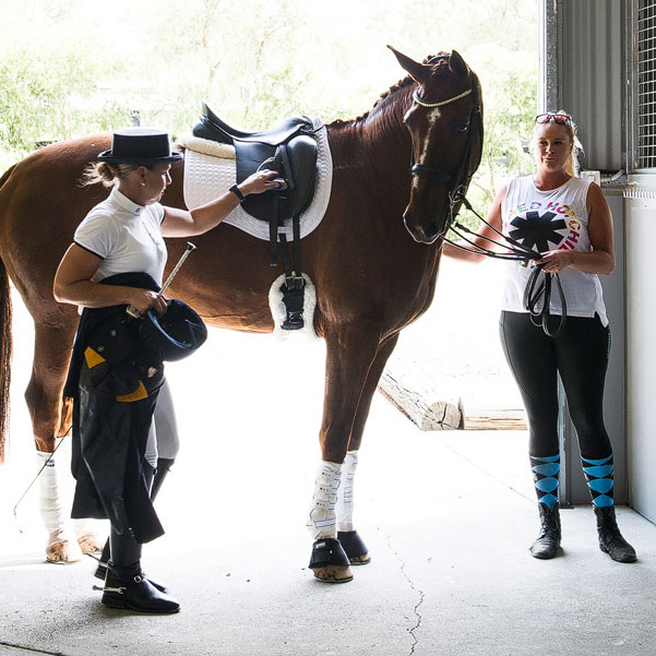 F.E.I dressage rider coaching
